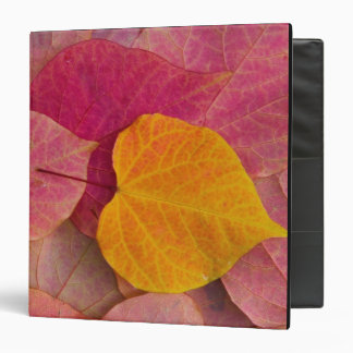 Fall color on Forest Pansy Redbud fallen Vinyl Binder