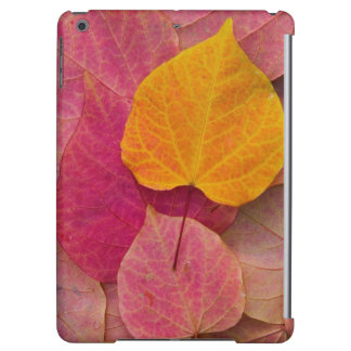 Fall color on Forest Pansy Redbud fallen Cover For iPad Air