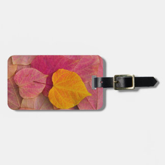 Fall color on Forest Pansy Redbud fallen Luggage Tag