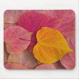 Fall color on Forest Pansy Redbud fallen Mouse Pad