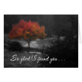 Fall Color Reunion Greeting Cards