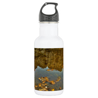 FALL COLORED LEAVES AND ROCKS REFLECTION WATER BOTTLE