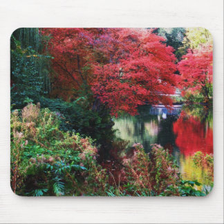Fall Colors and Autumn Leaves Mouse Pad