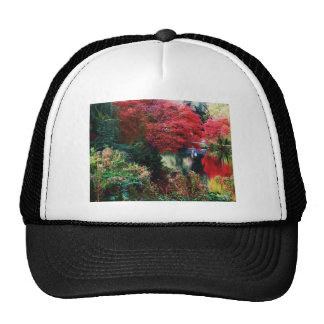 Fall Colors and Autumn Leaves Trucker Hat