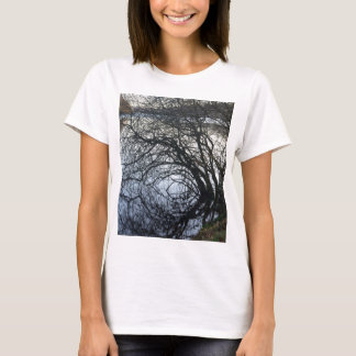Fall Colors And Reflections T-Shirt