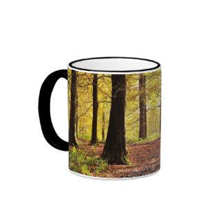 Fall Colors Autumn Mug
