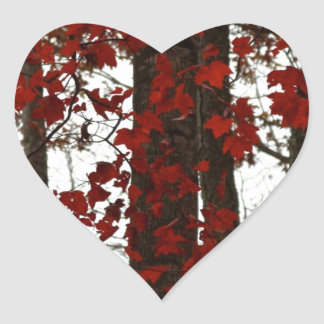 Fall Colors Autumn Trees Red Canadian Maple Leaves Heart Sticker