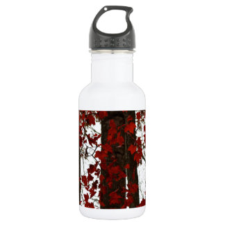 Fall Colors Autumn Trees Red Canadian Maple Leaves Stainless Steel Water Bottle