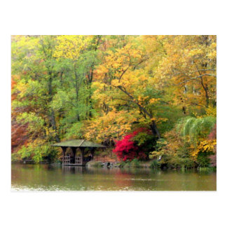 Fall Colors by the Lake Central Park Postcard
