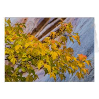 Fall Colors Card