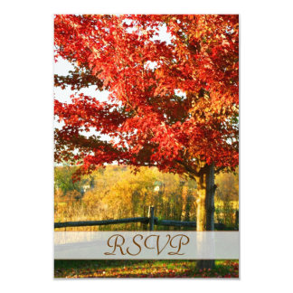 """Fall Colors Country RSVP Card 3.5"""" X 5"""" Invitation Card"""