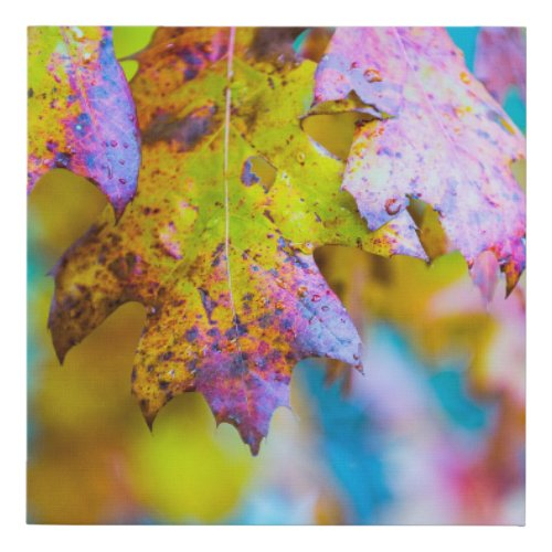 Fall Colors Faux Canvas Print - fall wall art