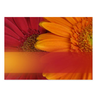 Fall colors gift tags large business cards (Pack of 100)