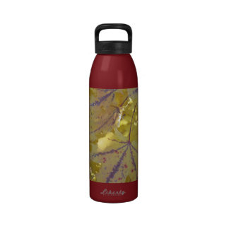 Fall colors- golden maple leafs drinking bottle
