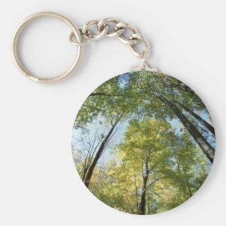 Fall Colors - Great Smoky Mountains - Trees Key Chain