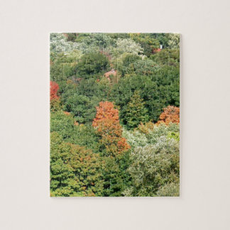 Fall Colors : HIGH PARK Toronto Puzzles