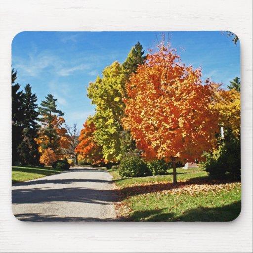 Fall Colors in Cincinnati Mouse Pads