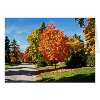 Fall Colors in Cincinnati Stationery Note Card
