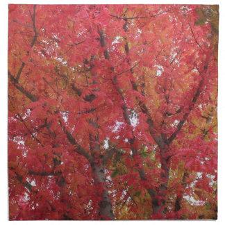 Fall Colors in Napa, California Napkin
