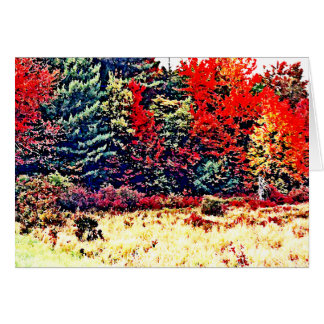 Fall Colors in New England Card