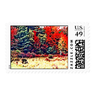 Fall Colors in New England Postage