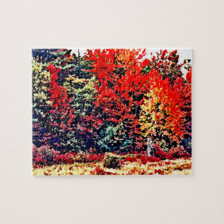 Fall Colors in New England Puzzle