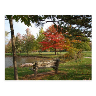 Fall colors in Ohio Postcard