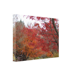 Fall Colors in the Blue Ridge Mountains Canvas Print