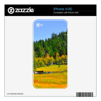Fall colors in the Rockies Decal For The iPhone 4
