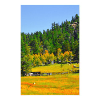 Fall colors in the Rockies Stationery