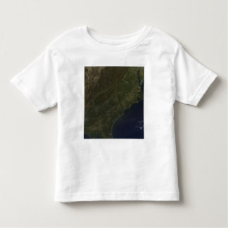 Fall colors in the southeastern United States Toddler T-shirt
