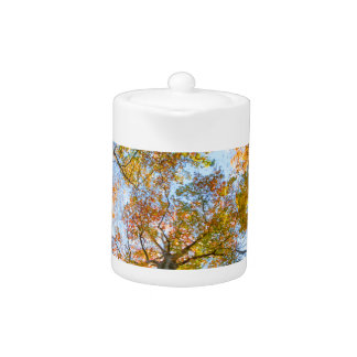 Fall Colors in the Woods Teapot