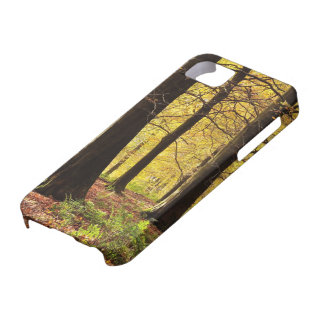 Fall Colors iPhone 5 Case