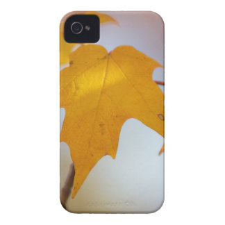 Fall Colors iPhone Case-Mate iPhone 4 Cover