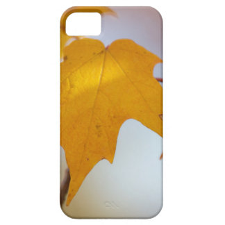 Fall Colors iPhone Case-Mate iPhone SE/5/5s Case