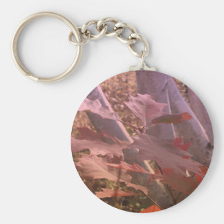 Fall Colors Keychain