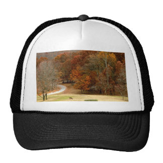 Fall Colors Landscape Autumn Trees Leaves Deer Hats