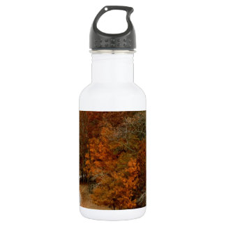 Fall Colors Landscape Autumn Trees Leaves Deer Stainless Steel Water Bottle