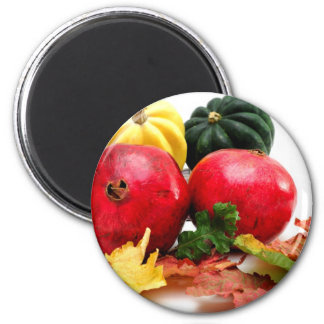 Fall Colors Magnet