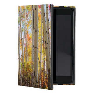 Fall colors of Aspen trees 5 Case For iPad Mini