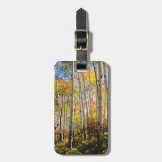 Fall colors of Aspen trees 5 Luggage Tag