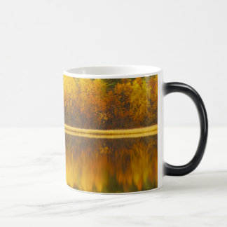 fall colors of the water in Norway 11 Oz Magic Heat Color-Changing Coffee Mug