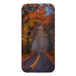 Fall Colors Phone Case Covers For iPhone 5