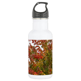 Fall Colors Photo Autumn Trees Leaves 18oz Water Bottle