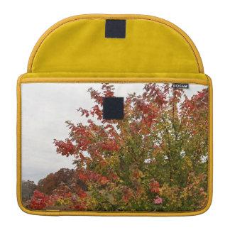Fall Colors Photo Autumn Trees Leaves MacBook Pro Sleeve
