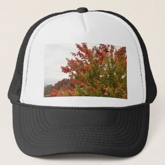 Fall Colors Photo Autumn Trees Leaves Trucker Hat