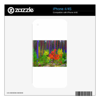Fall colors skin for iPhone 4