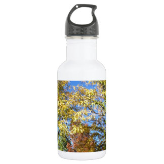 Fall Colors Stainless Steel Water Bottle