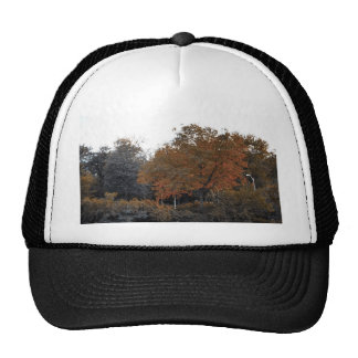Fall Colors Trucker Hat