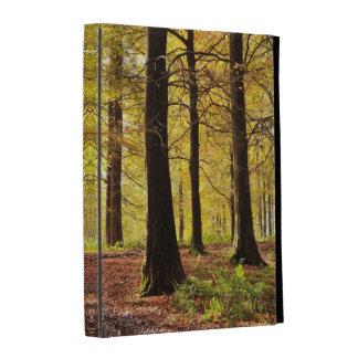 Fall Colours iPad Folio Case